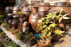 Pots pour la fermentation des légumes, comme le kimchi