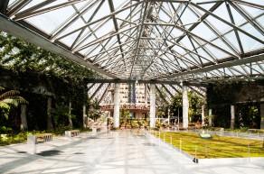 Yeomiji Botanical Garden, jeju