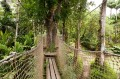 Pont suspendu au Jardin de Balata