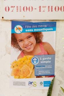 Campagne contre les moustiques